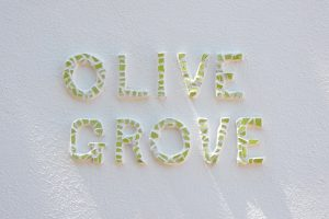 Appartement Olive Grove (bew)